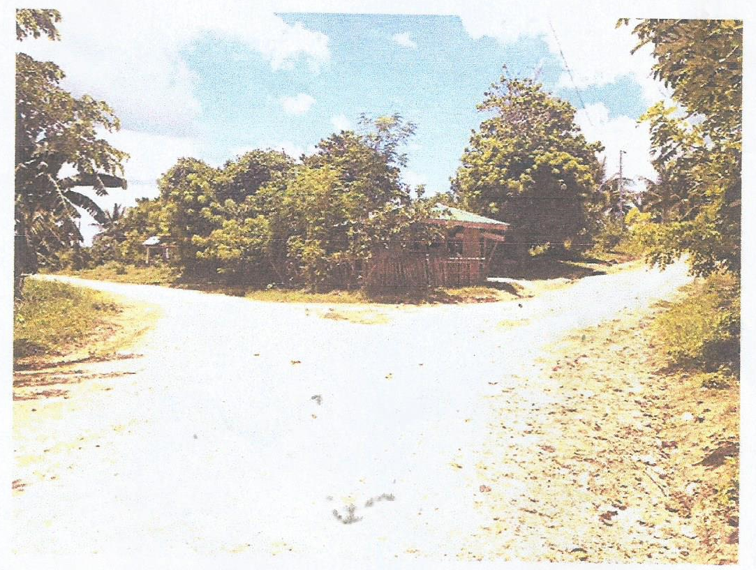 For Sale Lot at Bgy., Yuni Mulanay, Province of Quezon